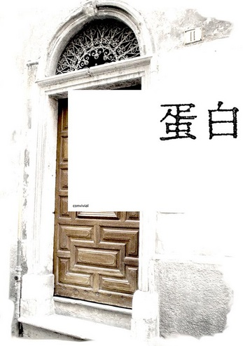 stefano venezia albume cuneo italia italy art contemporary